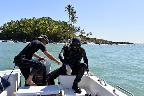 Remontée des plongeurs devant l'île du diable
